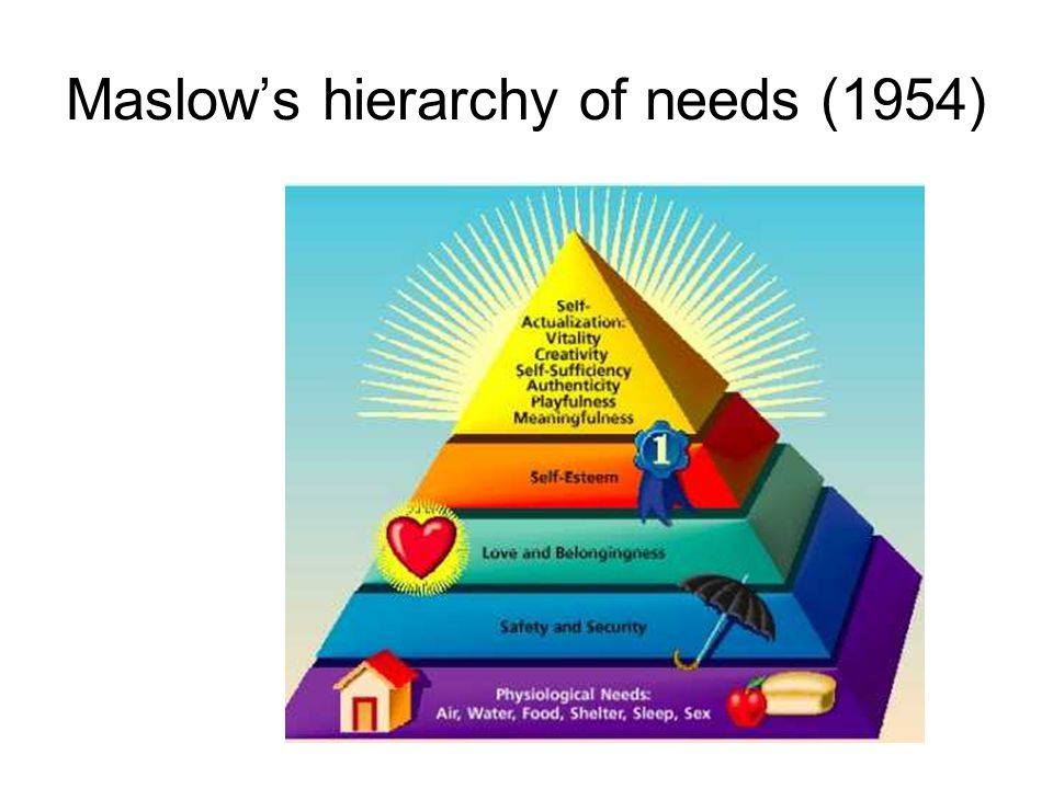 Maslow's hierarchy of needs (1954)