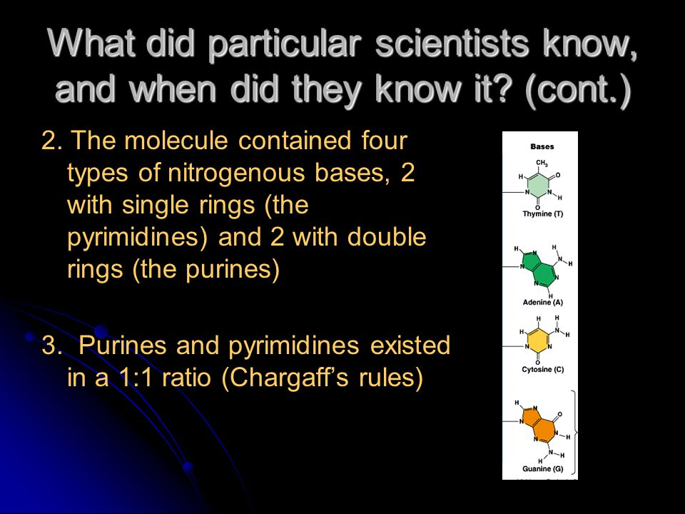 What did particular scientists know, and when did they know it.