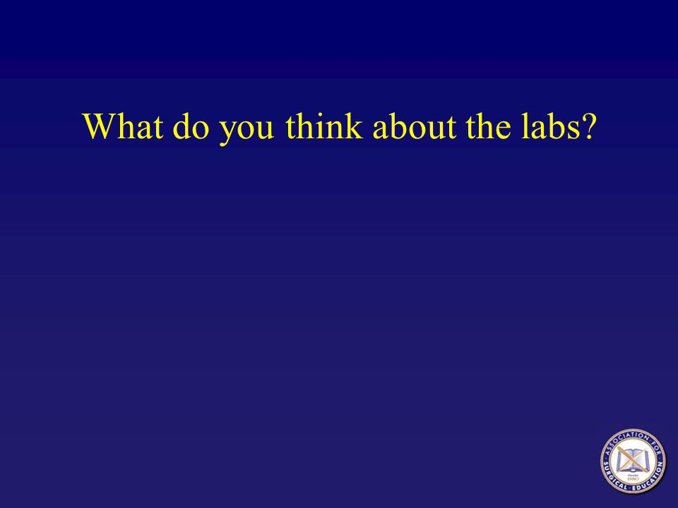 What do you think about the labs?