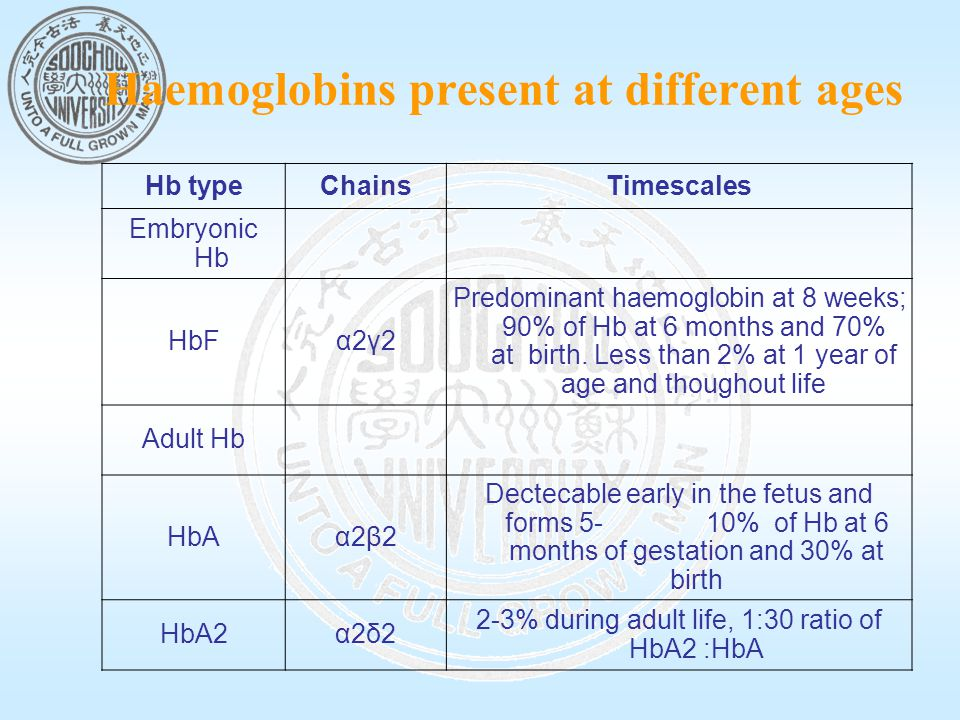 Haemoglobins present at different ages Hb typeChainsTimescales Embryonic Hb HbFα2γ2 Predominant haemoglobin at 8 weeks; 90% of Hb at 6 months and 70% at birth.