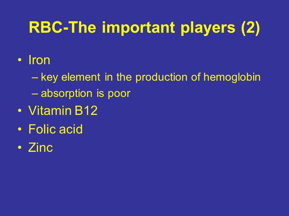 RBC-The important players (2) Iron –key element in the production of hemoglobin –absorption is poor Vitamin B12 Folic acid Zinc