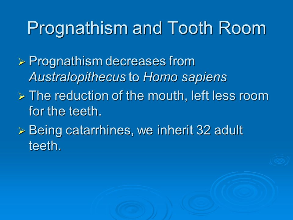 Prognathism and Tooth Room  Prognathism decreases from Australopithecus to Homo sapiens  The reduction of the mouth, left less room for the teeth. 
