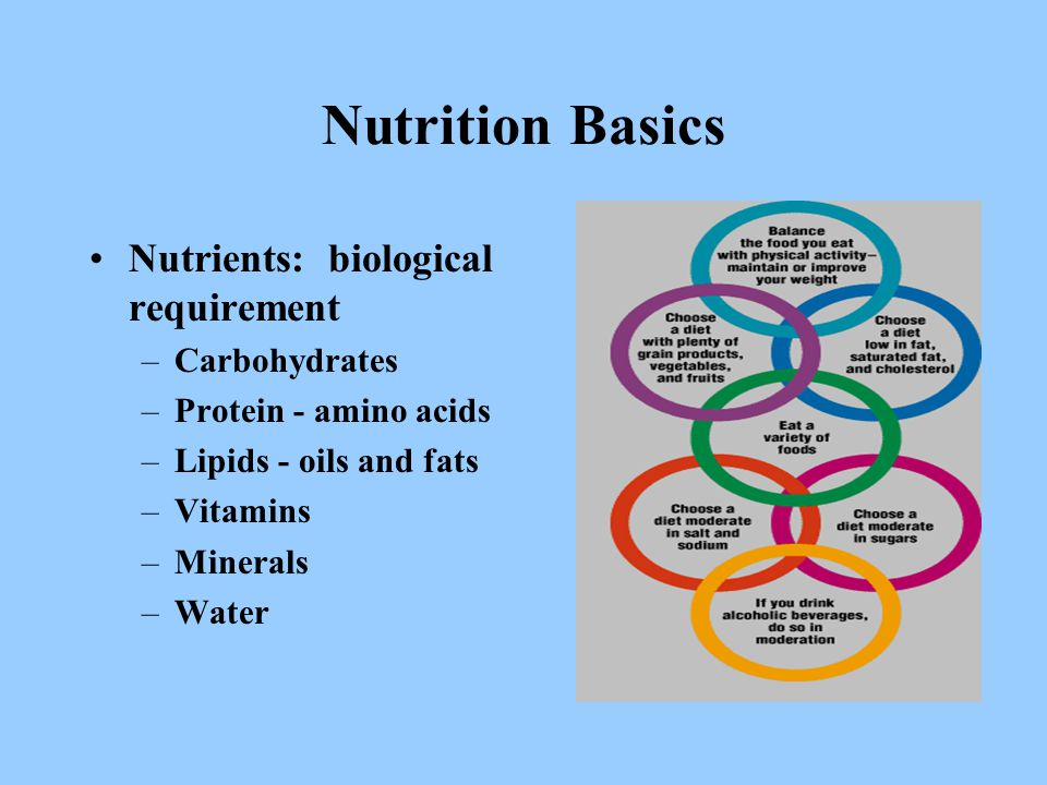 –Carbohydrates –Protein - amino acids –Lipids - oils and fats –Vitamins –Minerals –Water Nutrition Basics