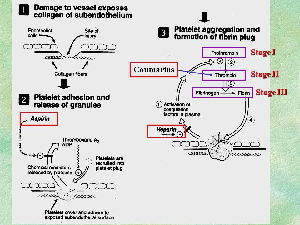 Coumarins Stage I Stage II Stage III