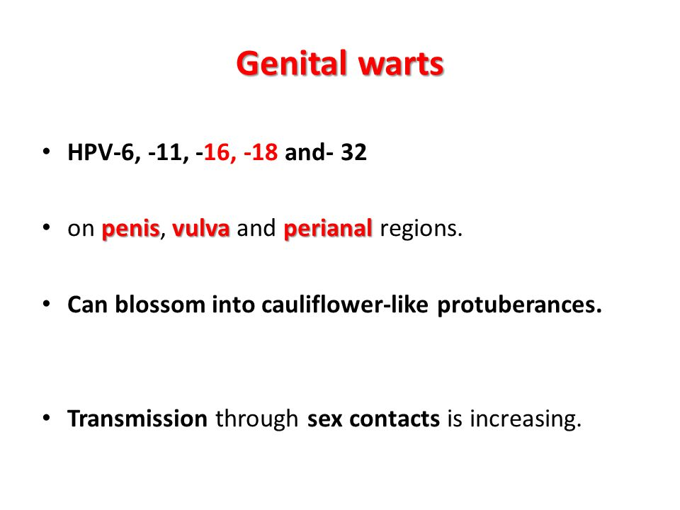 Genital warts HPV-6, -11, -16, -18 and- 32 penisvulvaperianal on penis, vulva and perianal regions. Can blossom into cauliflower-like protuberances. T