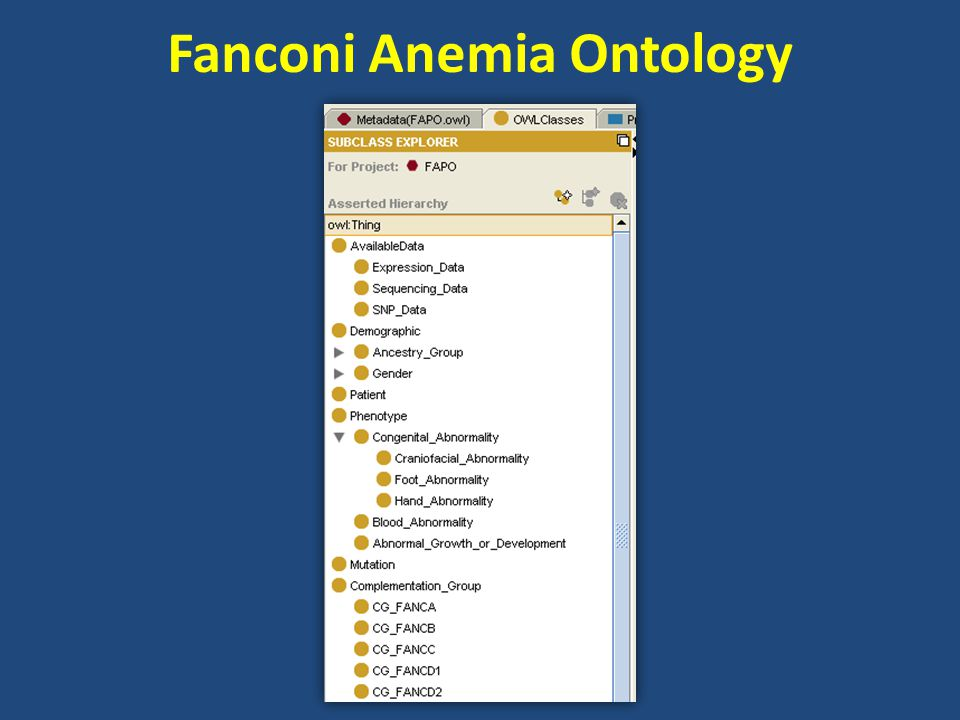 Fanconi Anemia Ontology