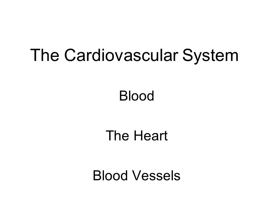 Cardiovascular system Functions: Transports: oxygen carbon dioxide nutrients wastes chemical messengers Homeostasis of pH temperature clotting Disease Defense