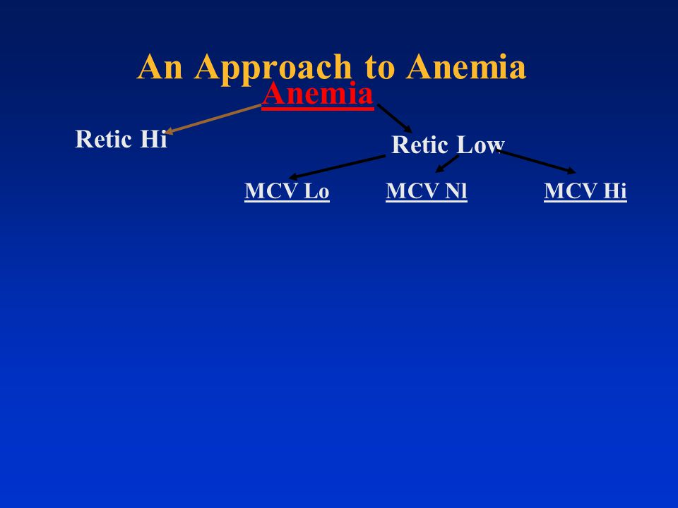 Retic Hi Retic Low Anemia MCV HiMCV NlMCV Lo An Approach to Anemia