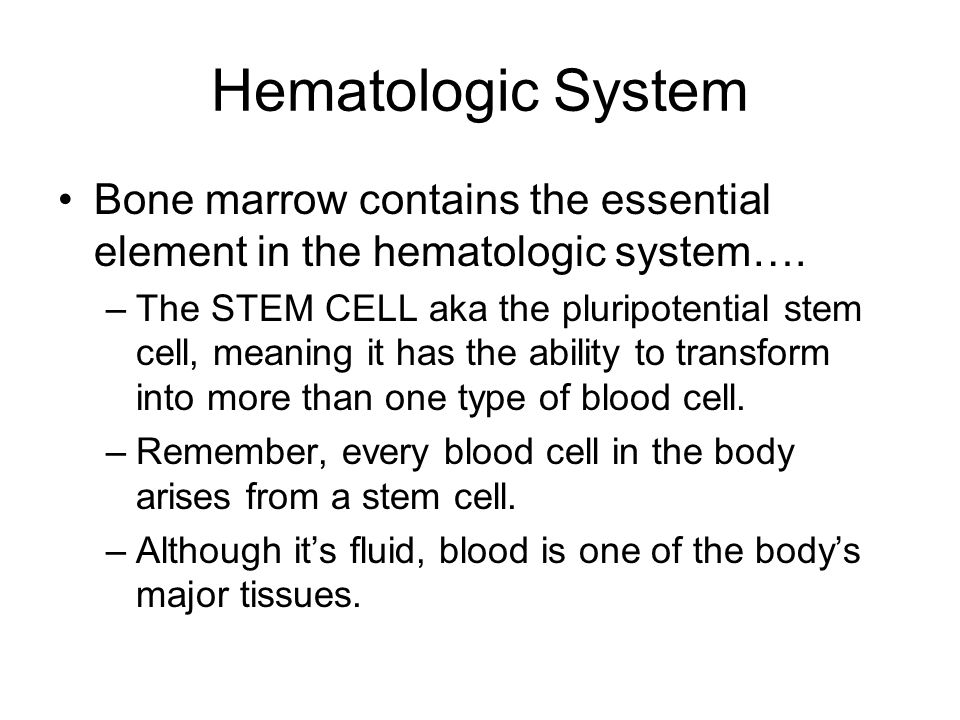 Blood Formation In utero, the process of blood formation, called hematopoiesis, occurs in the liver and spleen.