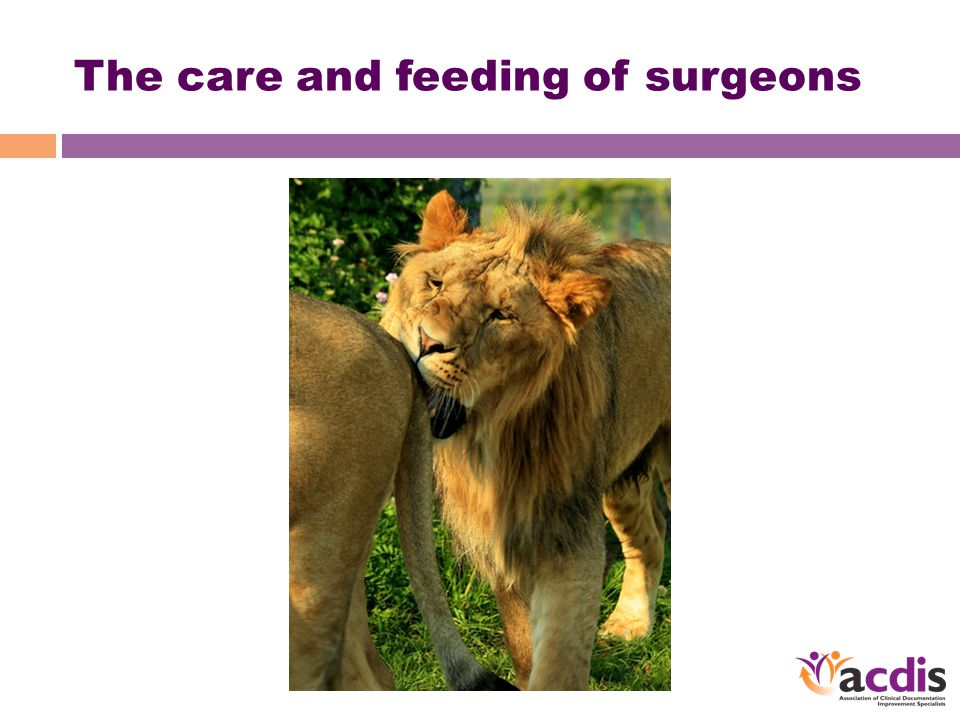 The care and feeding of surgeons