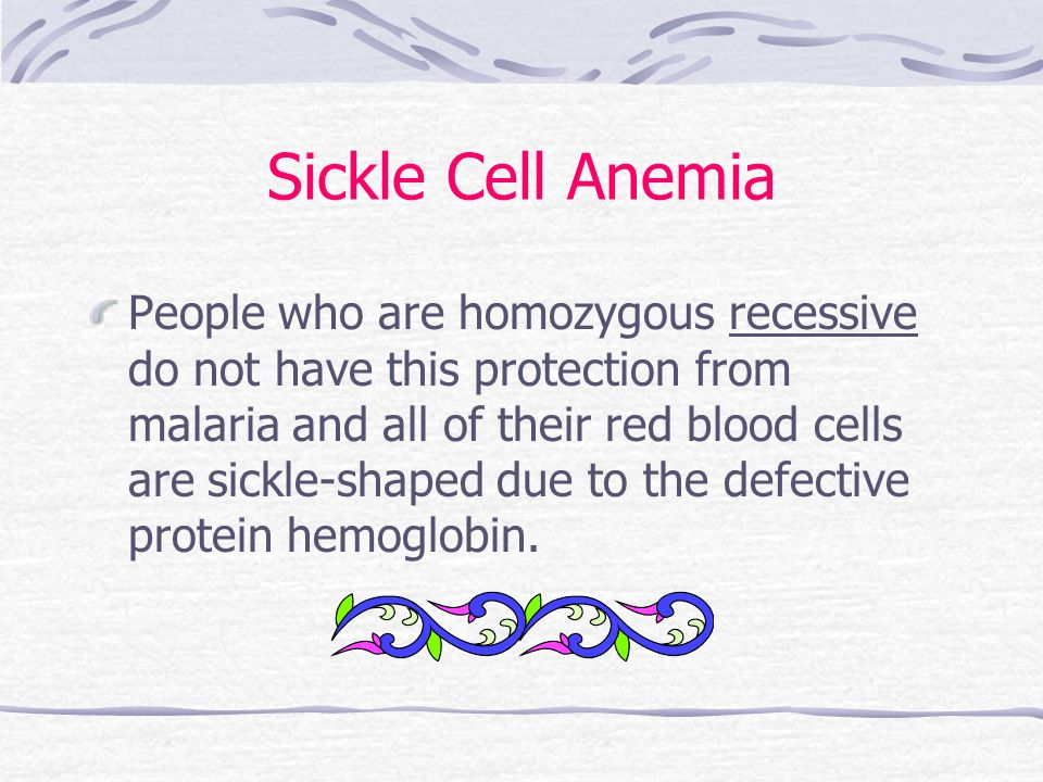 Sickle Cell Anemia People who are homozygous recessive do not have this protection from malaria and all of their red blood cells are sickle-shaped due