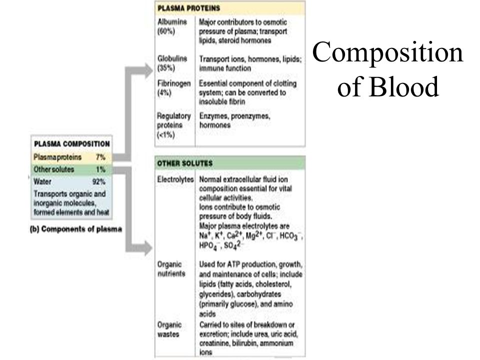 Iron-deficiency anemia results from: –A secondary result of hemorrhagic anemia –Inadequate intake of iron-containing foods –Impaired iron absorption Pernicious anemia results from: –Deficiency of vitamin B 12 –Lack of intrinsic factor needed for absorption of B 12 Treatment is intramuscular injection of B 12 Anemia: Decreased Hemoglobin Content