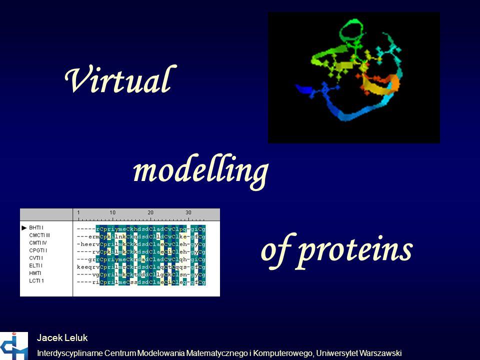 Virtual modelling of proteins Jacek Leluk Interdyscyplinarne Centrum Modelowania Matematycznego i Komputerowego, Uniwersytet Warszawski