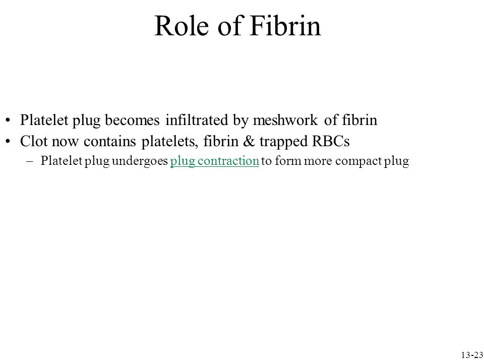 Platelet plug becomes infiltrated by meshwork of fibrin Clot now contains platelets, fibrin & trapped RBCs –Platelet plug undergoes plug contraction to form more compact plug Role of Fibrin 13-23