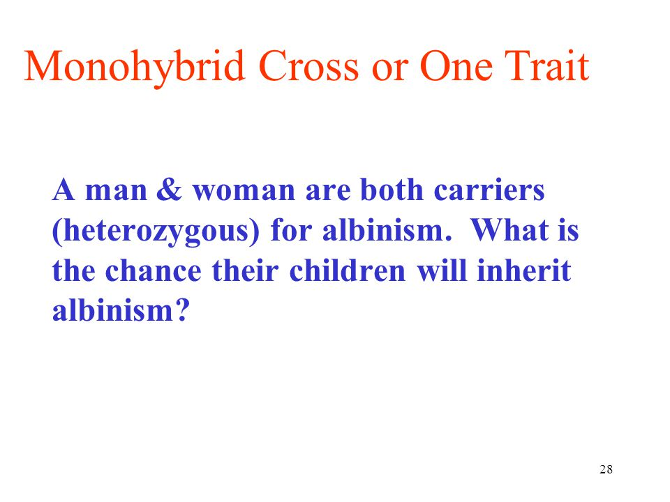 28 A man & woman are both carriers (heterozygous) for albinism. What is the chance their children will inherit albinism? Monohybrid Cross or One Trait