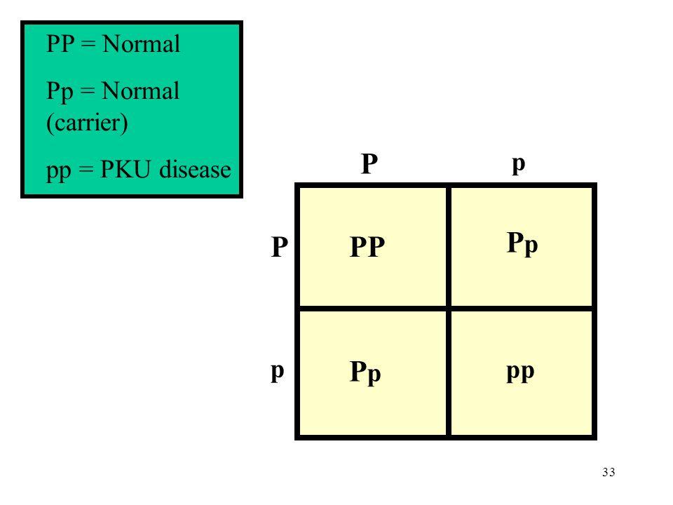 33 p p P PP PpPp PpPp pp P PP = Normal Pp = Normal (carrier) pp = PKU disease