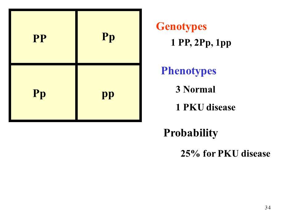 34 PP Pp pp Genotypes 1 PP, 2Pp, 1pp Phenotypes 3 Normal 1 PKU disease Probability 25% for PKU disease