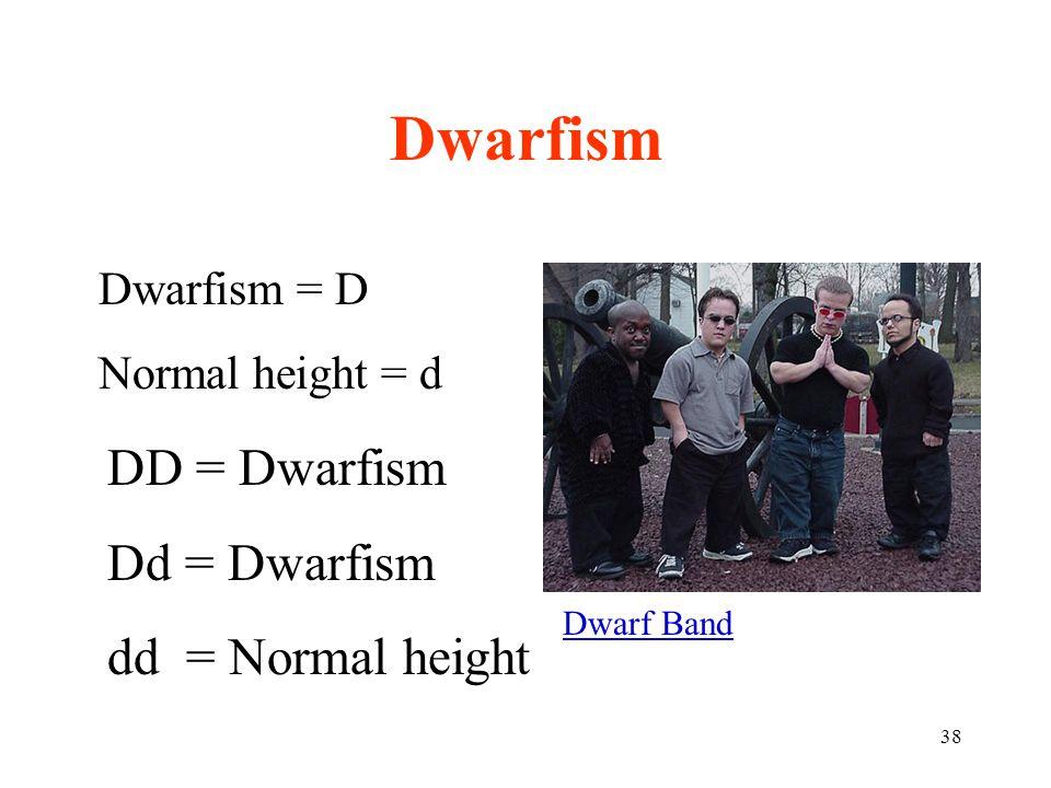 38 Dwarfism = D Normal height = d DD = Dwarfism Dd = Dwarfism dd = Normal height Dwarfism Dwarf Band
