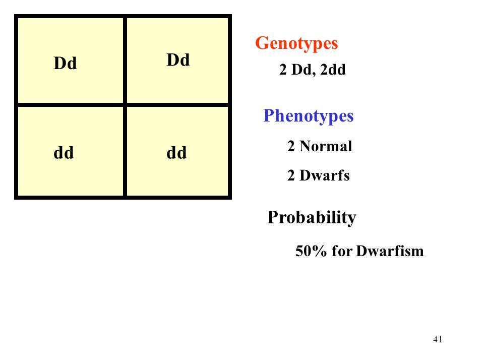 41 Dd dd Dd dd Genotypes 2 Dd, 2dd Phenotypes 2 Normal 2 Dwarfs Probability 50% for Dwarfism