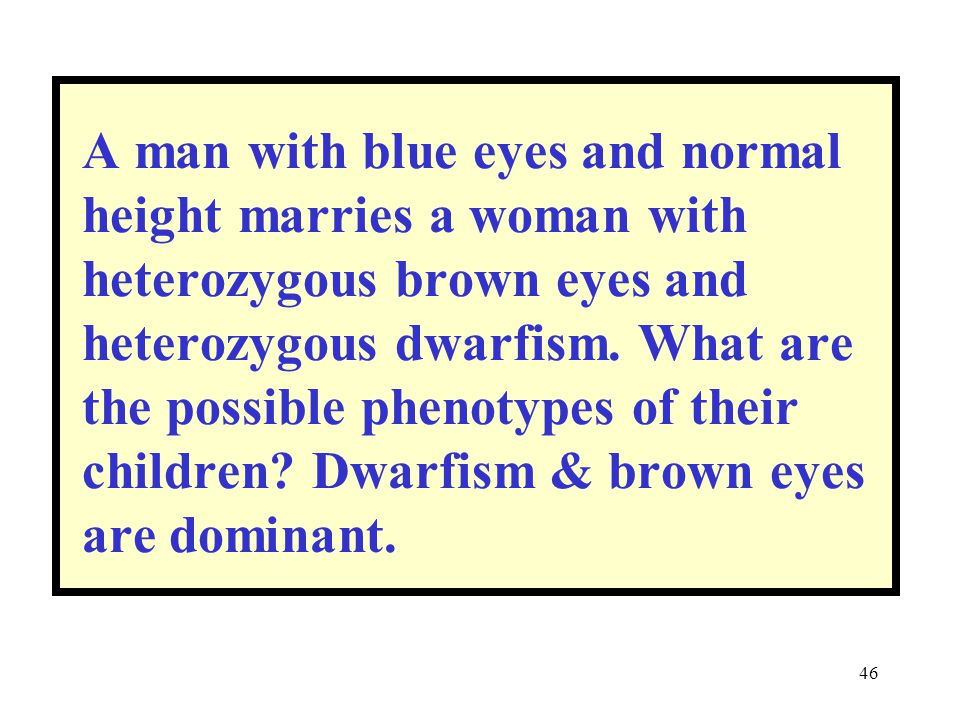 46 A man with blue eyes and normal height marries a woman with heterozygous brown eyes and heterozygous dwarfism. What are the possible phenotypes of