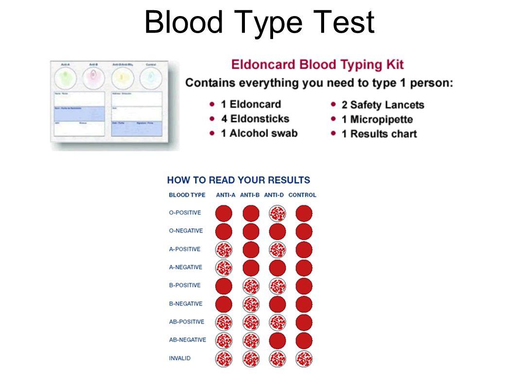 Blood Type Test