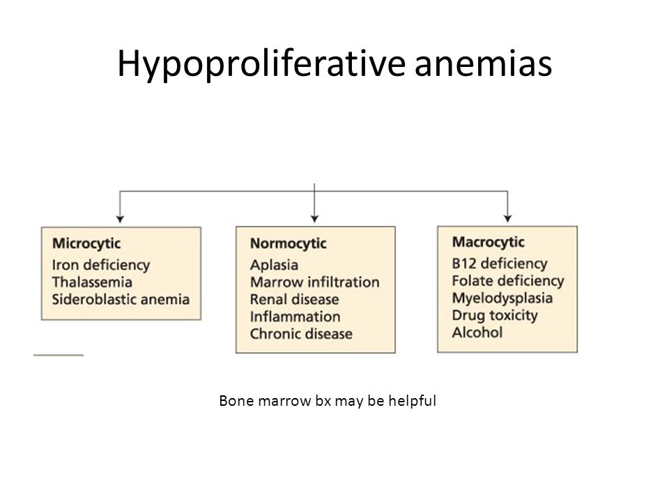 Hypoproliferative anemias Bone marrow bx may be helpful