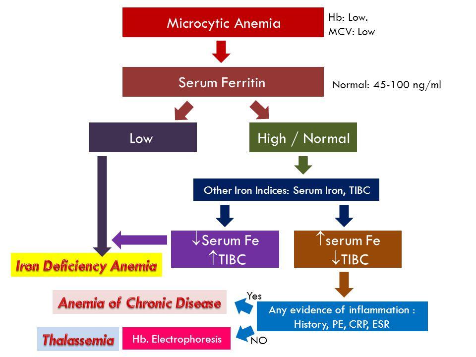 Microcytic Anemia Serum Ferritin Hb: Low.