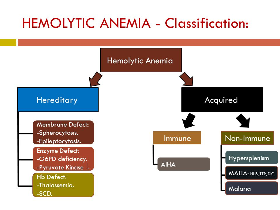 HEMOLYTIC ANEMIA - Classification: Hemolytic Anemia HereditaryAcquired Membrane Defect: -Spherocytosis.