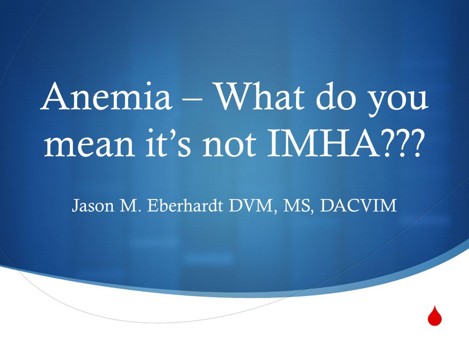  Anemia – What do you mean it's not IMHA??? Jason M. Eberhardt DVM, MS, DACVIM