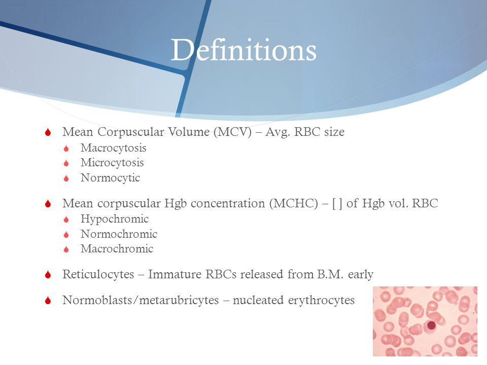Definitions  Mean Corpuscular Volume (MCV) – Avg. RBC size  Macrocytosis  Microcytosis  Normocytic  Mean corpuscular Hgb concentration (MCHC) – [