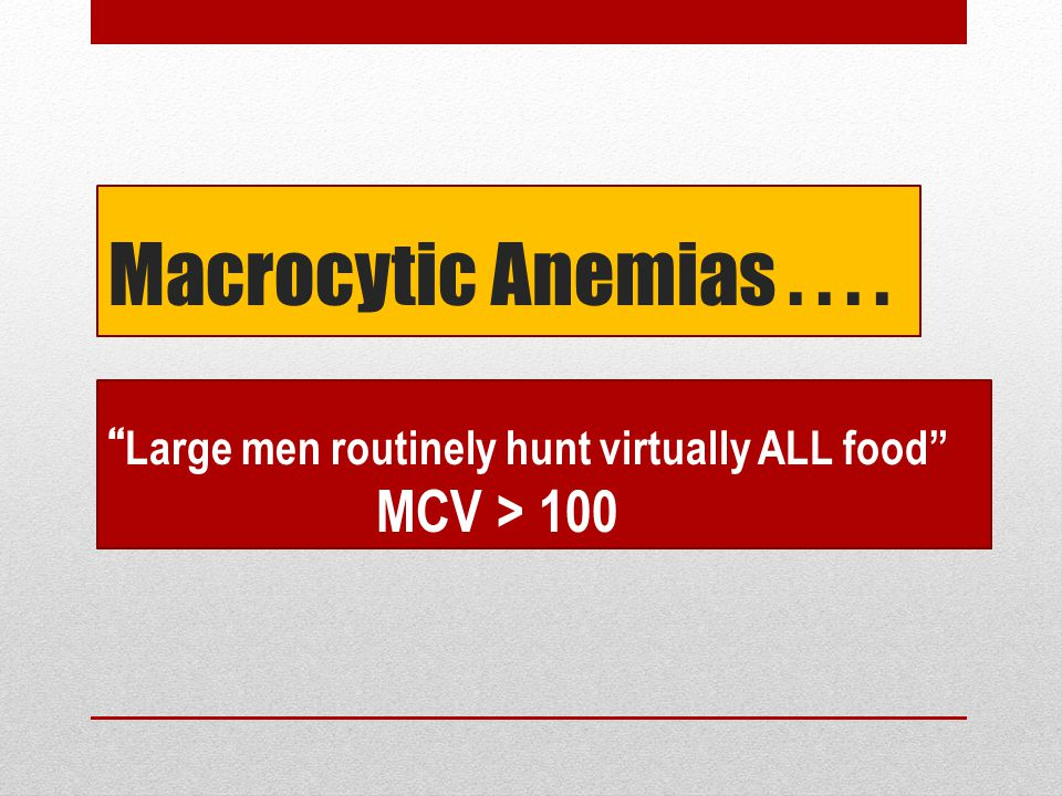 Macrocytic Anemias.... Large men routinely hunt virtually ALL food MCV > 100