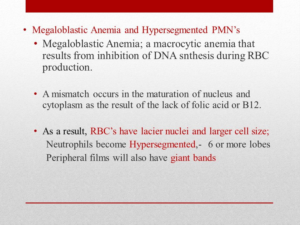 Megaloblastic Anemia and Hypersegmented PMN's Megaloblastic Anemia; a macrocytic anemia that results from inhibition of DNA snthesis during RBC production.