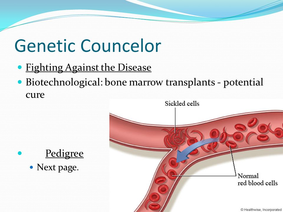 Genetic Councelor Fighting Against the Disease Biotechnological: bone marrow transplants - potential cure Pedigree Next page.