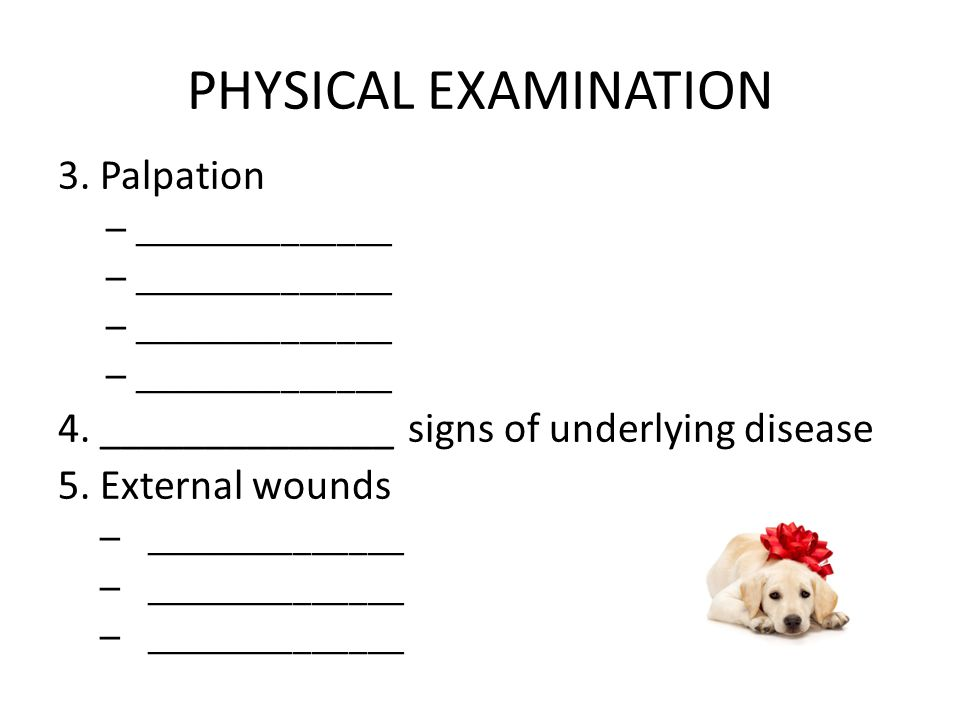 PHYSICAL EXAMINATION 3. Palpation – ______________ 4. ______________ signs of underlying disease 5. External wounds – ______________