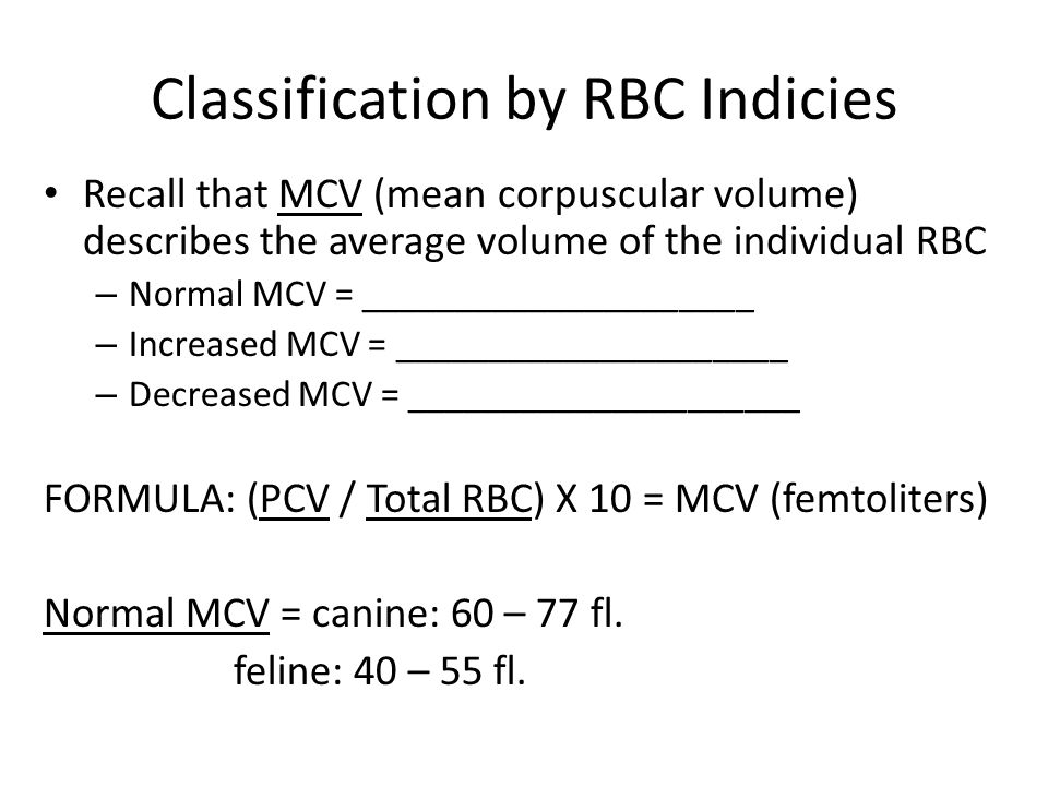 Classification by RBC Indicies Recall that MCV (mean corpuscular volume) describes the average volume of the individual RBC – Normal MCV = _____________________ – Increased MCV = _____________________ – Decreased MCV = _____________________ FORMULA: (PCV / Total RBC) X 10 = MCV (femtoliters) Normal MCV = canine: 60 – 77 fl.