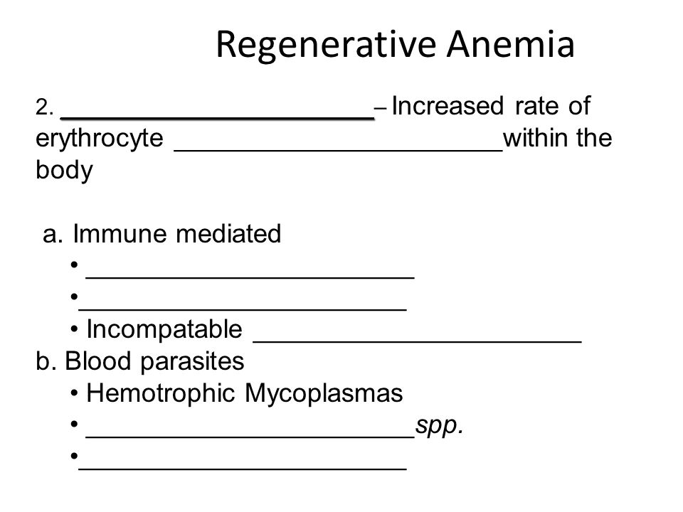 Regenerative Anemia _____________________ 2. _____________________ – Increased rate of erythrocyte ______________________within the body a. Immune med