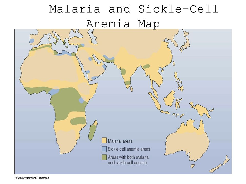 Malaria and Sickle-Cell Anemia Map