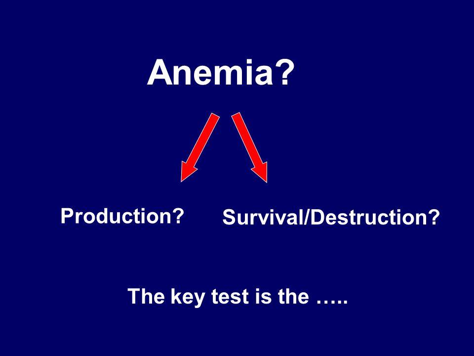 Anemia? Production? Survival/Destruction? The key test is the …..