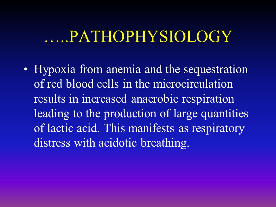…..PATHOPHYSIOLOGY Hypoxia from anemia and the sequestration of red blood cells in the microcirculation results in increased anaerobic respiration lea