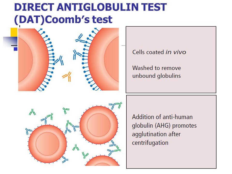 DIRECT ANTIGLOBULIN TEST (DAT)Coomb′s test