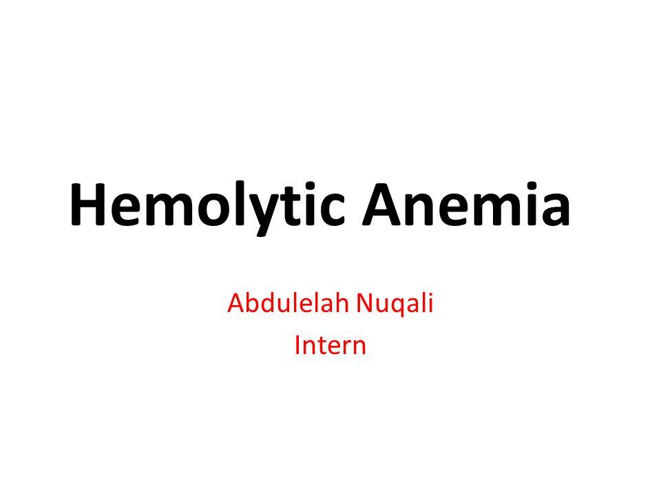 Abdulelah Nuqali Intern