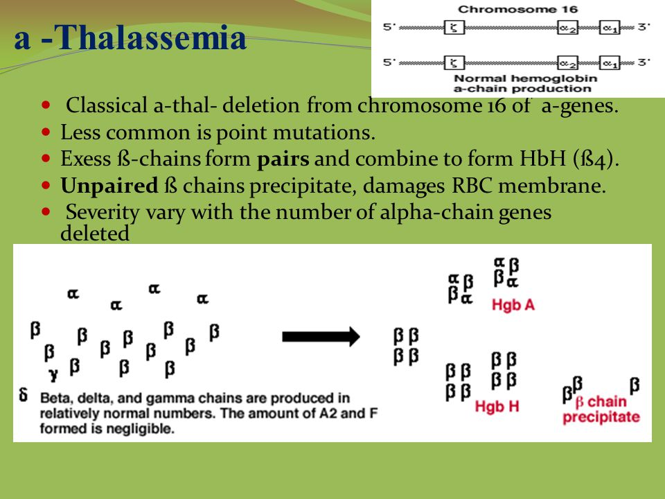 a -Thalassemia Classical a-thal- deletion from chromosome 16 of a-genes.