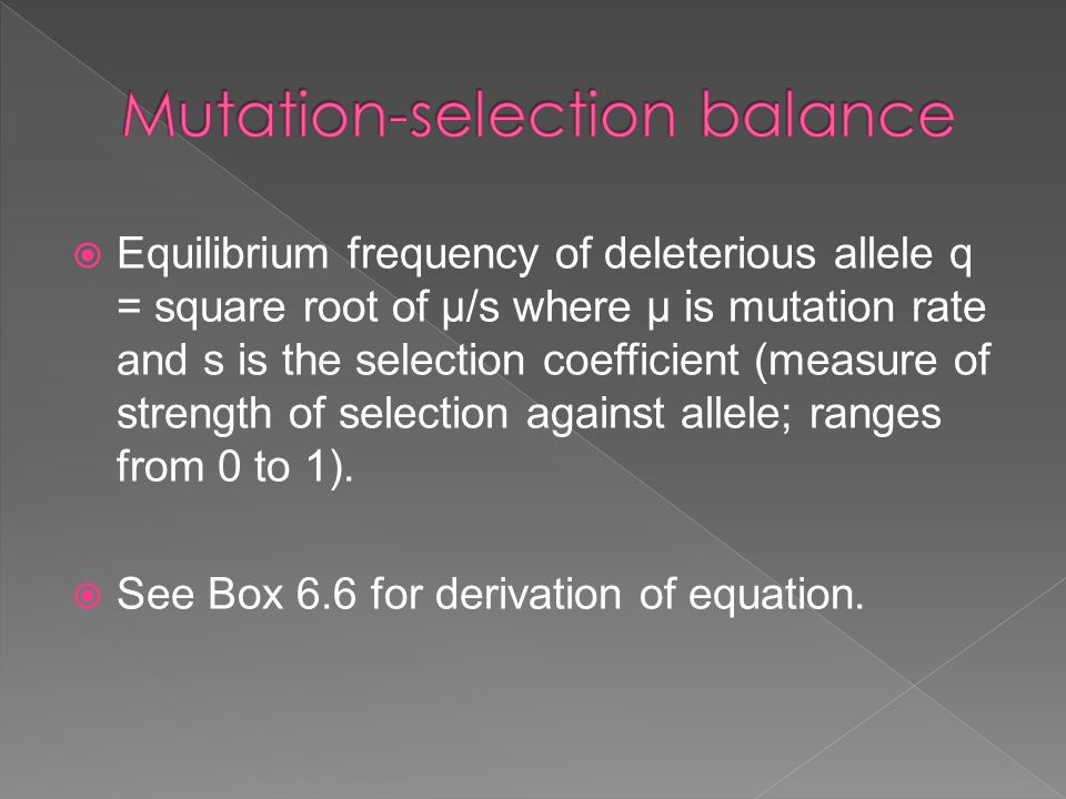  Equilibrium frequency of deleterious allele q = square root of µ/s where µ is mutation rate and s is the selection coefficient (measure of strength of selection against allele; ranges from 0 to 1).