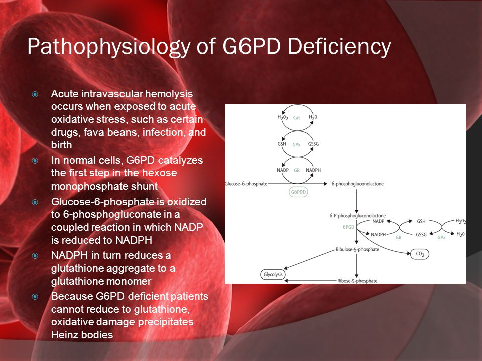 Pathophysiology of G6PD Deficiency  Acute intravascular hemolysis occurs when exposed to acute oxidative stress, such as certain drugs, fava beans, i