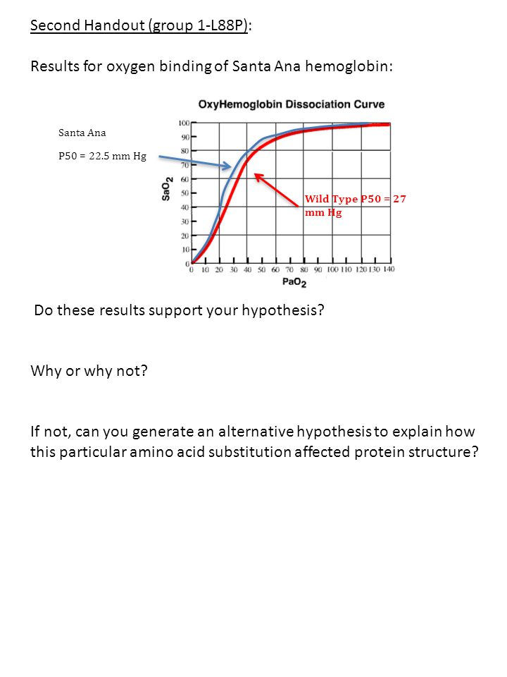 Second Handout (group 1-L88P): Results for oxygen binding of Santa Ana hemoglobin: Do these results support your hypothesis? Why or why not? If not, c