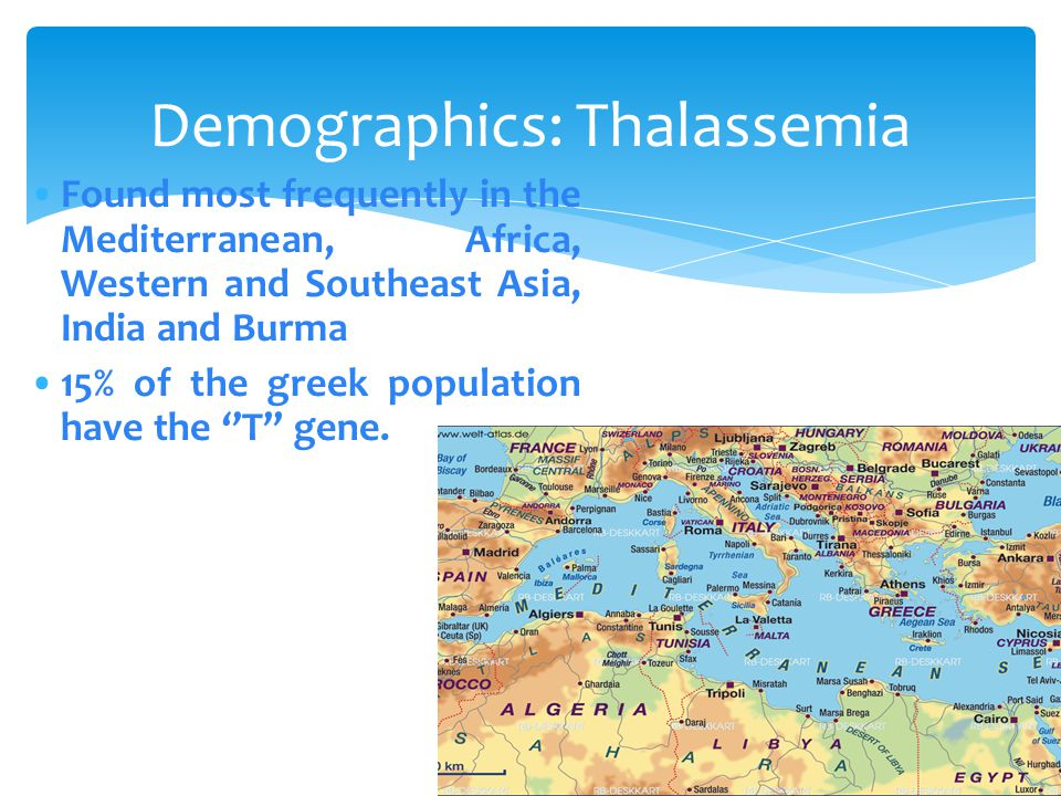 There are two basic groups of thalassaemia.