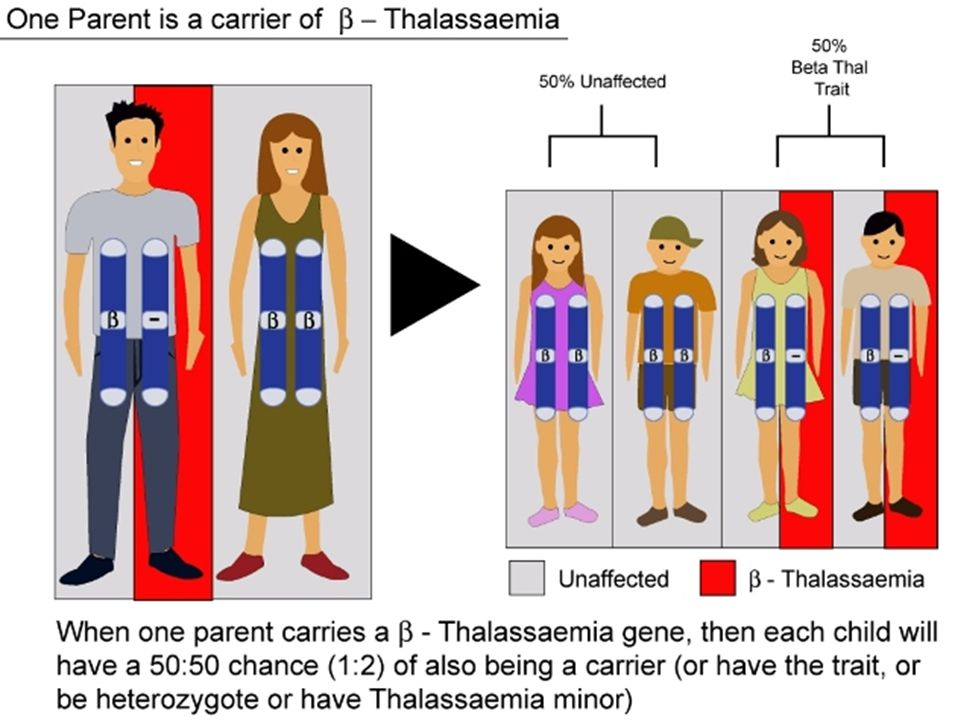  Raising awareness for more frequent blood donations, since patients with β-thalasseamia require frequent transfusions  8 th of May: Thalassemia awareness day.