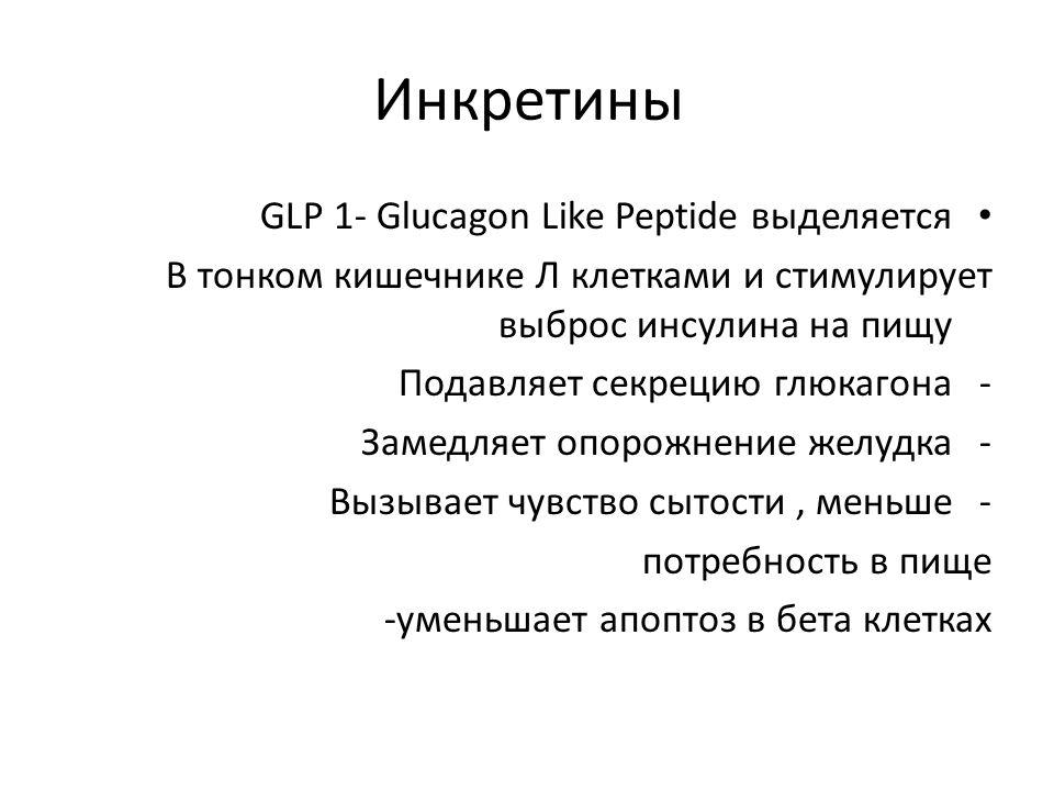 Инкретины GLP 1- Glucagon Like Peptide выделяется В тонком кишечнике Л клетками и стимулирует выброс инсулина на пищу -Подавляет секрецию глюкагона -Замедляет опорожнение желудка -Вызывает чувство сытости, меньше потребность в пище -уменьшает апоптоз в бета клетках