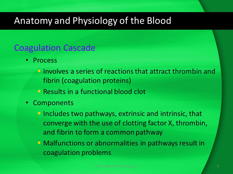 Anatomy and Physiology of the Blood Coagulation Cascade Process  Involves a series of reactions that attract thrombin and fibrin (coagulation proteins)  Results in a functional blood clot Components  Includes two pathways, extrinsic and intrinsic, that converge with the use of clotting factor X, thrombin, and fibrin to form a common pathway  Malfunctions or abnormalities in pathways result in coagulation problems © Paradigm Publishing, Inc.9