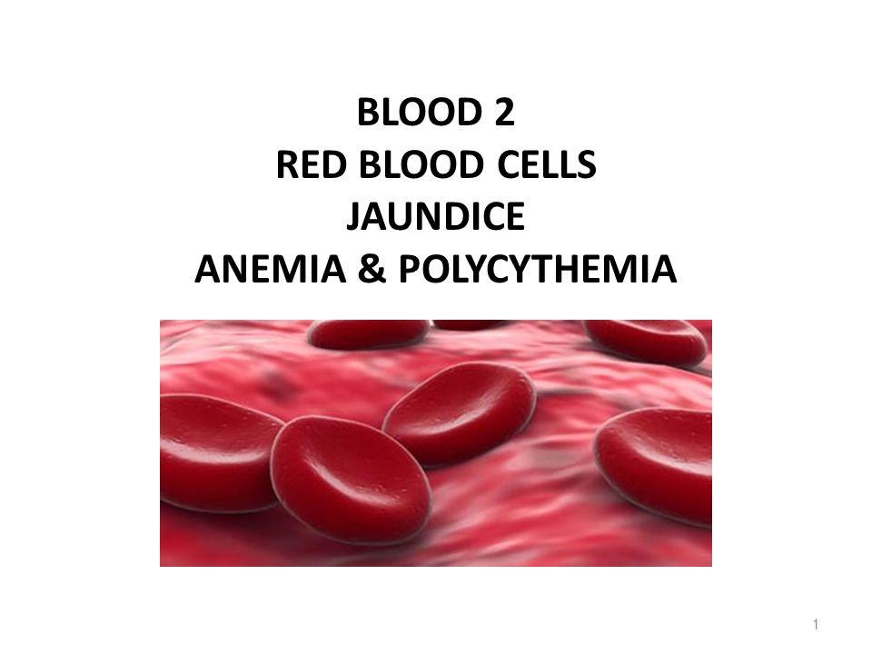 PREHEPATIC METABOLISM OF Hb 32 RBC or remnant Macrophages Cell remnantsHemoglobin HemGlobin Pigment Fe++ CO Biliverdin Bilirubin Exhaled Blood Albumin Bilirubin-albumin Fe++ poolProtein poolLiver Removal of the globin from Hb in macrophages → protein pool of the body Conversion of the hem pigment into the bile pigment biliverdin + CO → bilirubin → blood plasma In the plasma water insoluble bilirubin combines with albumin to form water soluble complex → liver